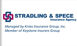 Knies Insurance Group, Inc.